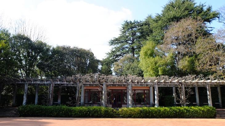 Casa de Cha de Serralves