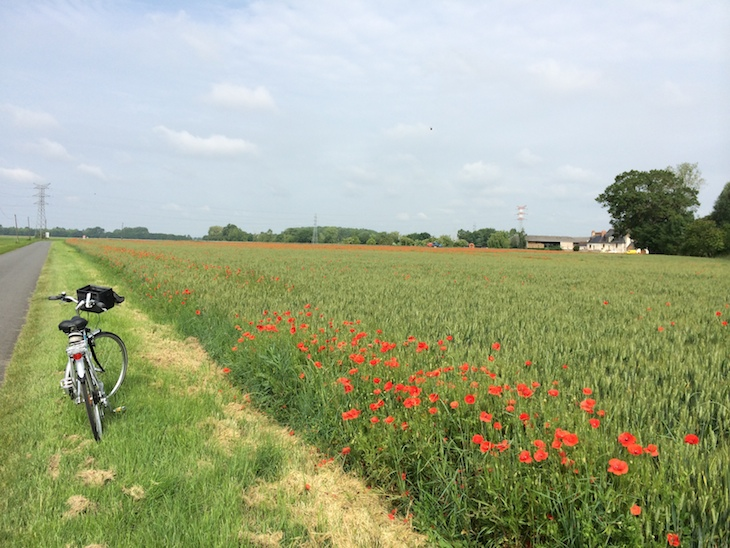 De Bicicleta no Vale do Loire