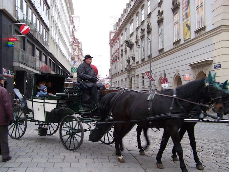 Passeios de charrete no centro de Viena