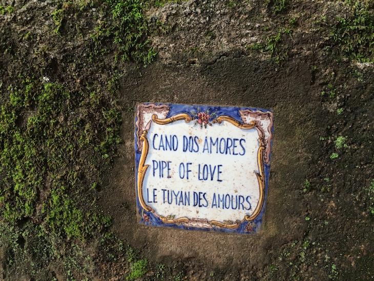 Cano dos Amores, Quinta das Lágrimas, Coimbra