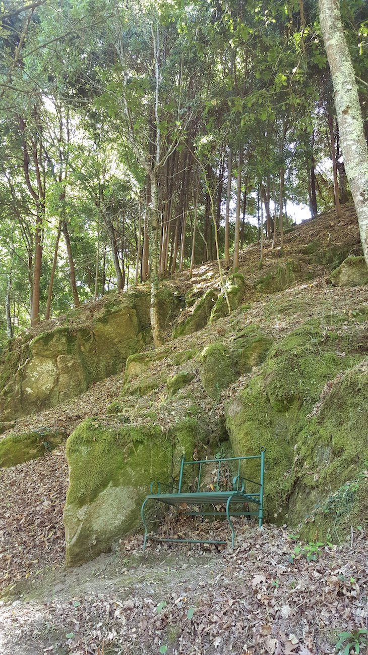 Passear na Quinta da Bouça © Viaje Comigo