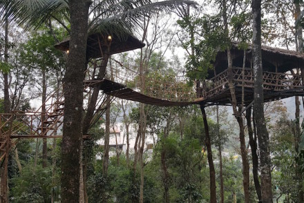 Casa na árvore, Greenwoods Resort, Thekkady © Viaje Comigo