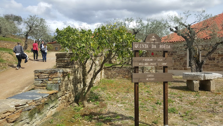 Quinta da Roêda © Viaje Comigo