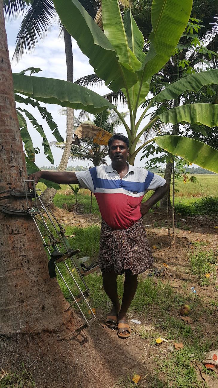 Subir a uma palmeira - Kumarakom – Village life experience, Kerala © Viaje Comigo