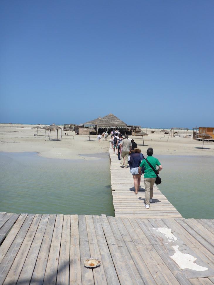 Chegada a Ras R'Mal - Ilha dos Flamingos, Djerba, Tunísia © Viaje Comigo