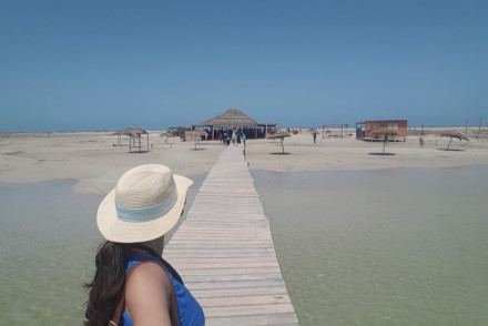 Ilha dos Flamingos, Djerba, Tunísia © Viaje Comigo