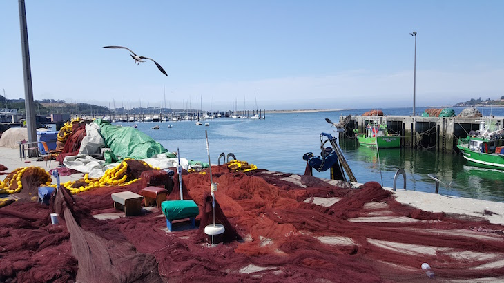 Gaivota e redes Afurada, Vila Nova de Gaia © Viaje Comigo