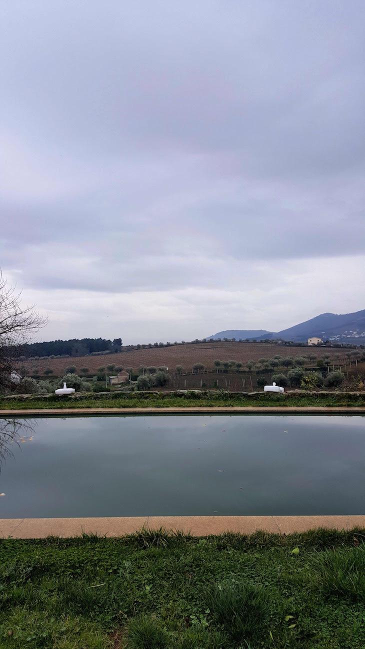 Piscina da Casa dos Barros - Sabrosa © Viaje Comigo