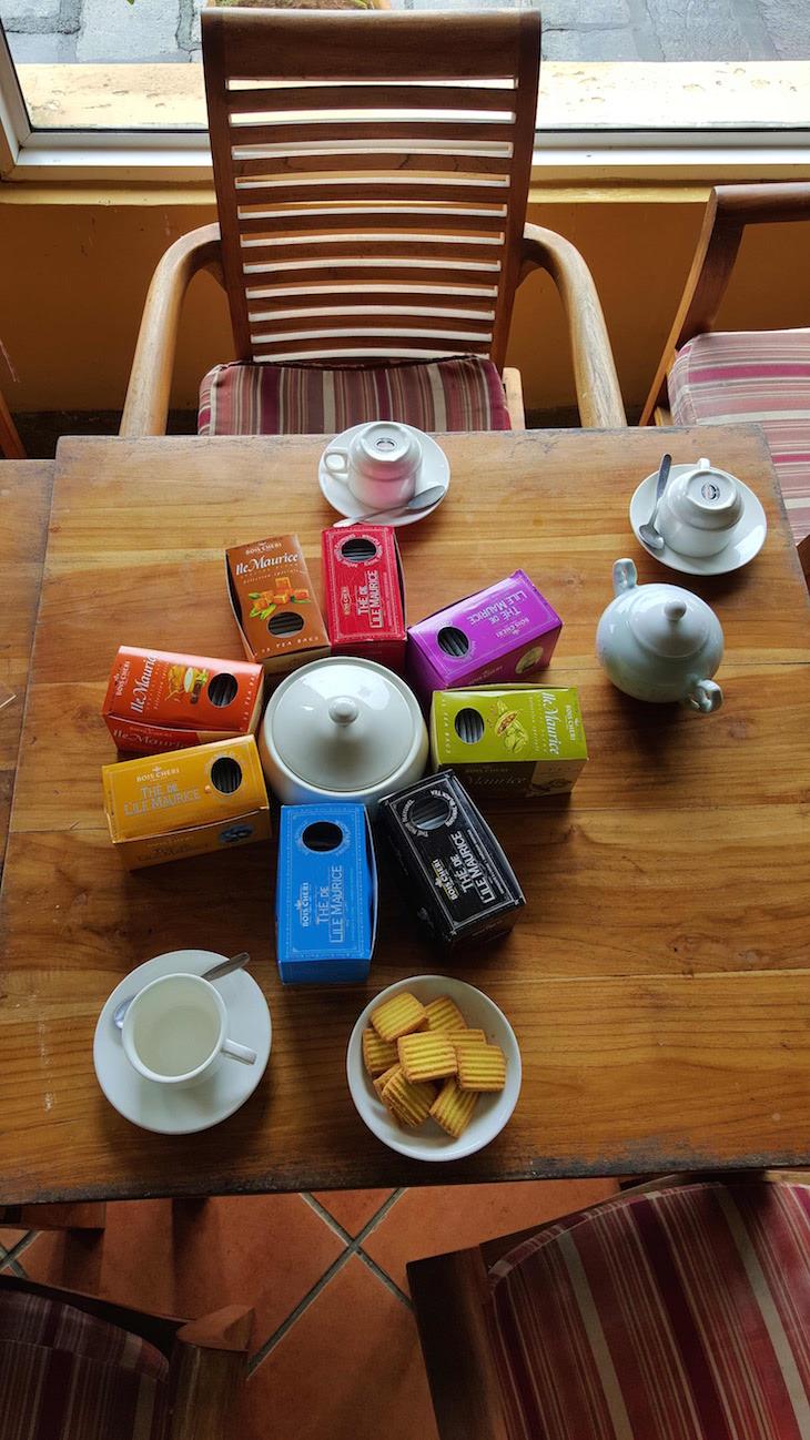 Provas de chá em Bois Chéri, Ilhas Maurícias © Viaje Comigo
