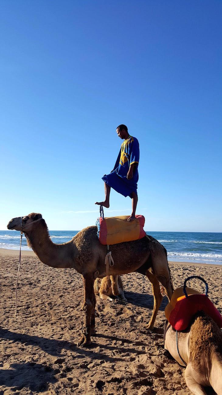Passeio de dromedário - Saidia - Marrocos © Viaje Comigo