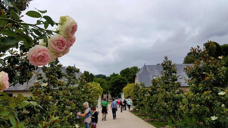 Festival de Jardins em Chaumont-sur-Loire - França © Viaje Comigo