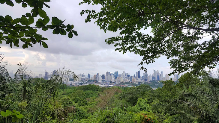 Parque Natural Metropolitano - Panamá © Viaje Comigo
