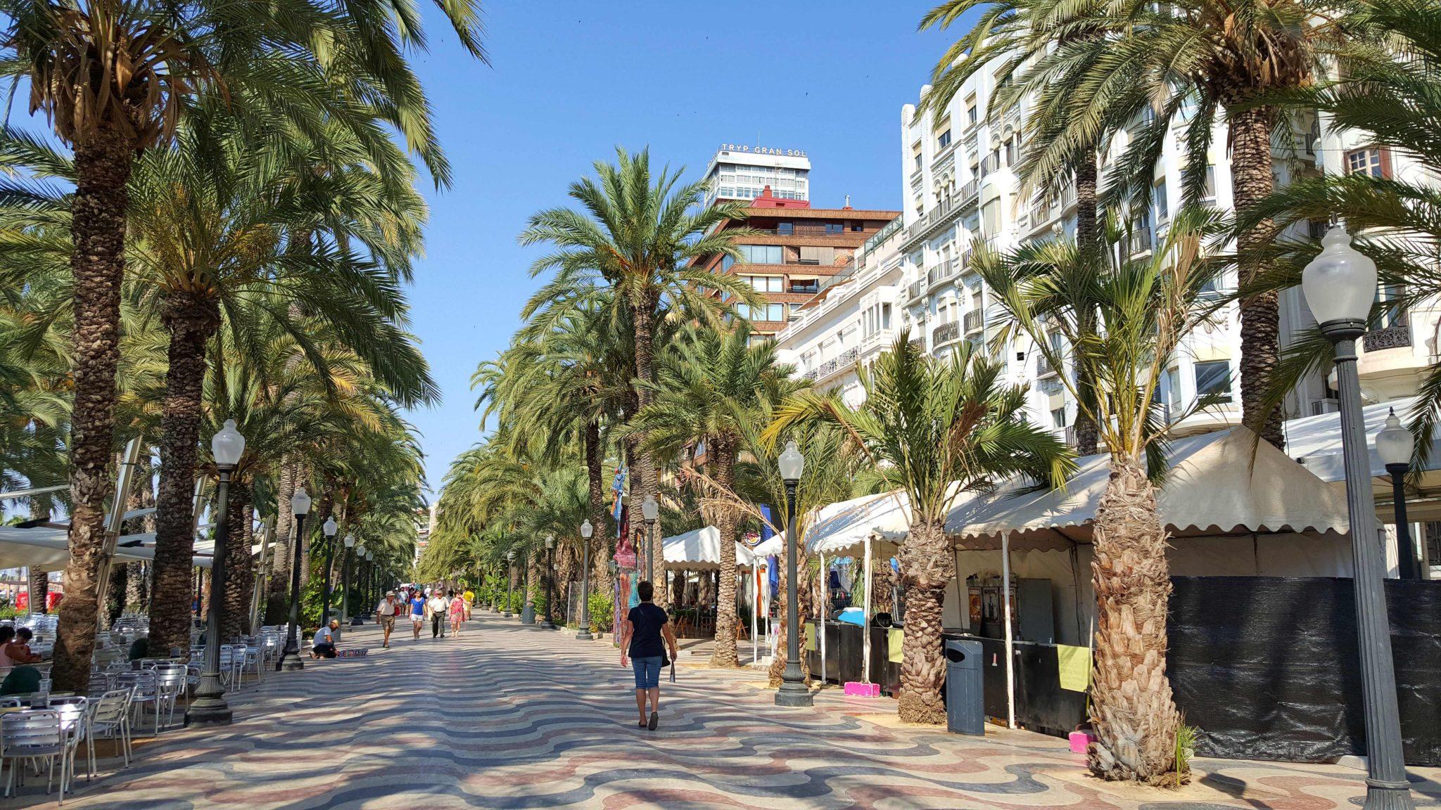 Passeio Esplanada de Espanha - Alicante - Espanha © Viaje Comigo