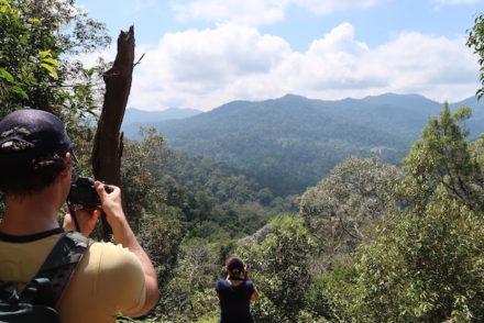 Taman Negara - Malásia © Viaje Comigo