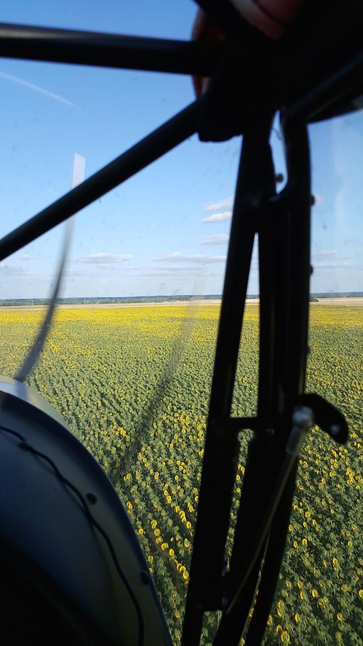 Campos de girassóis - Voo com a Loisirs Loire Valley © Viaje Comigo
