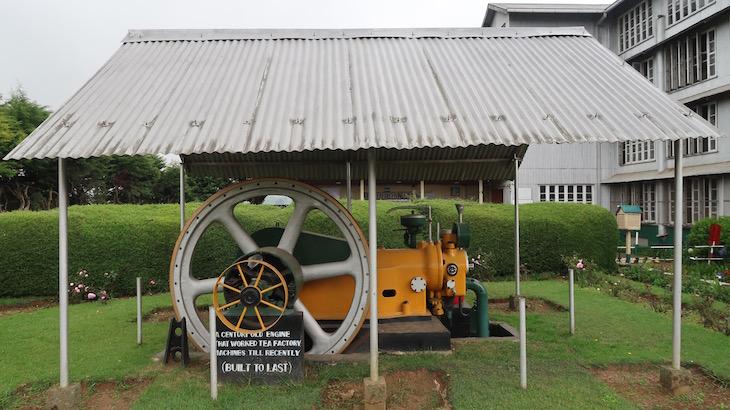 Na empresa de chá Pedro Estate - Nuwara Eliya - Sri Lanka © Viaje Comigo