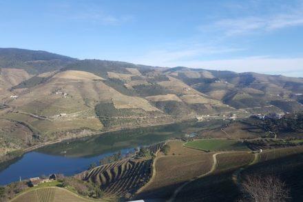 Douro - Tabuaço © Viaje Comigo