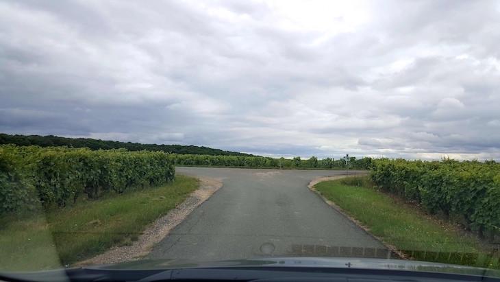 Encruzilhada nas vinhas - Na estrada no Vale do Loire - França © Viaje Comigo