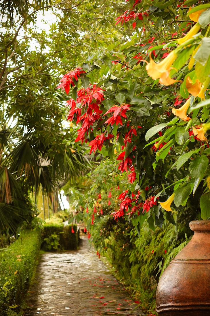 Jardim Tropical Monte Palace- Madeira © Débora Pinto