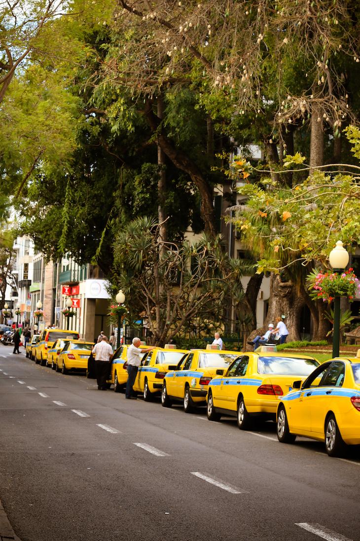 Praça de Táxis - Funchal - Madeira © Débora Pinto