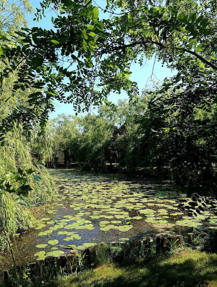 Green Village Resort - Sfântu Gheorghe - Roménia © Viaje Comigo