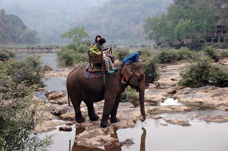Passeio de elefante, a cruzar o rio Nam Khan