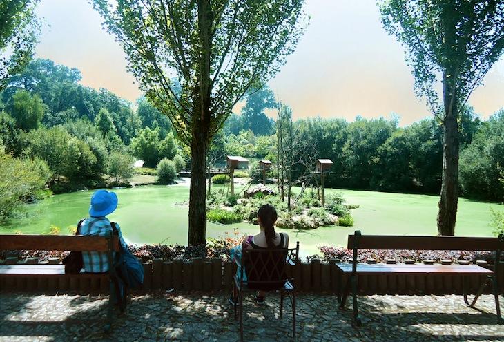 Vista ilha lémures Zoo Santo Inácio