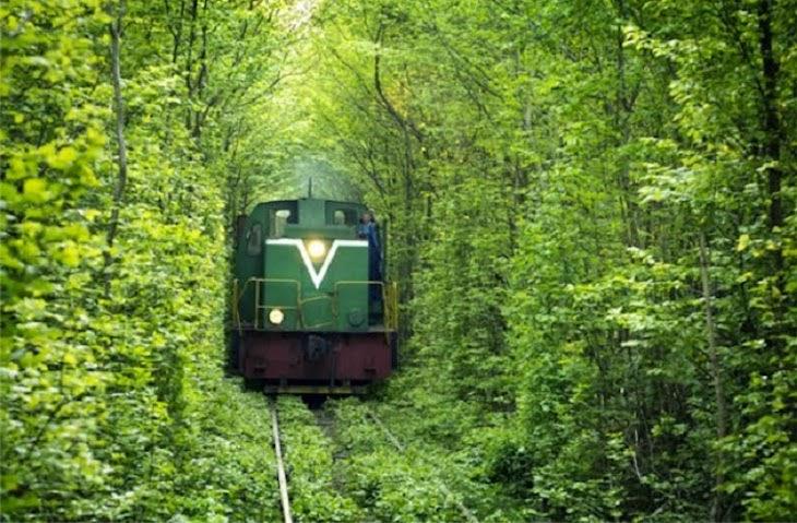 Túnel do amor em Klevan, Ucrânia