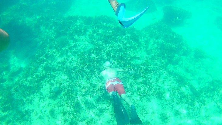 Snorkeling em Varadero - Cuba © Viaje Comigo