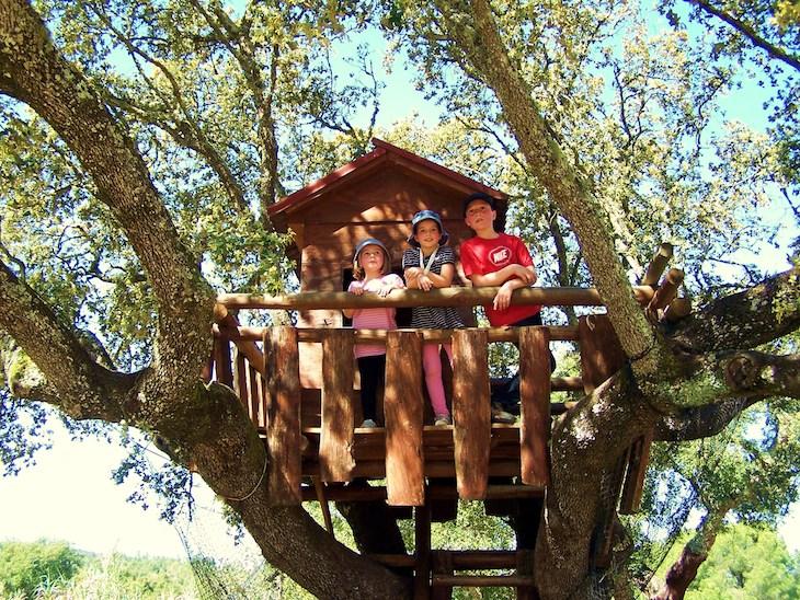 Monte Selvagem - Casas nas árvores