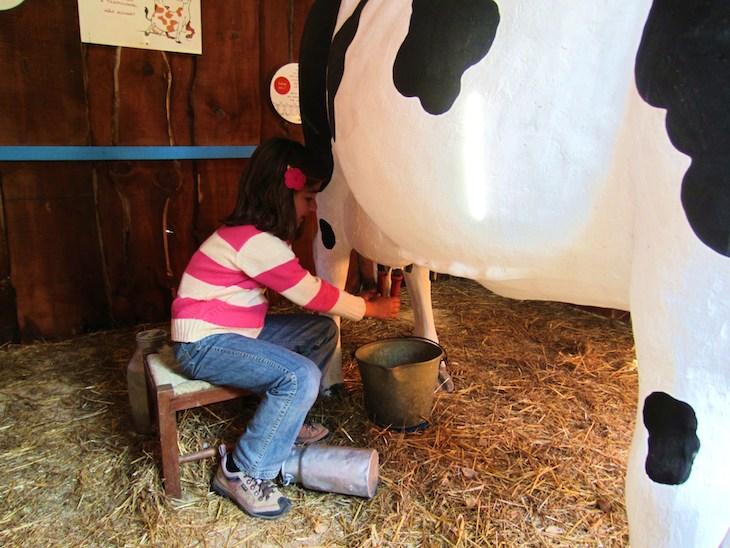 Aprender a ordenhar vaca