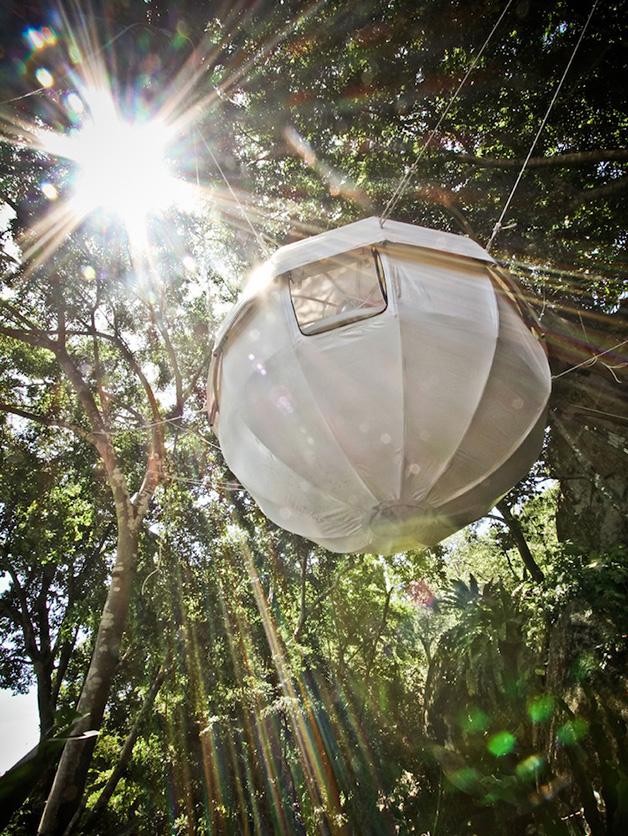 Cocoon Tree Tent