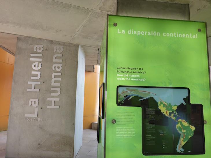 Museu da Biodiversidade do Panamá ©Viaje Comigo