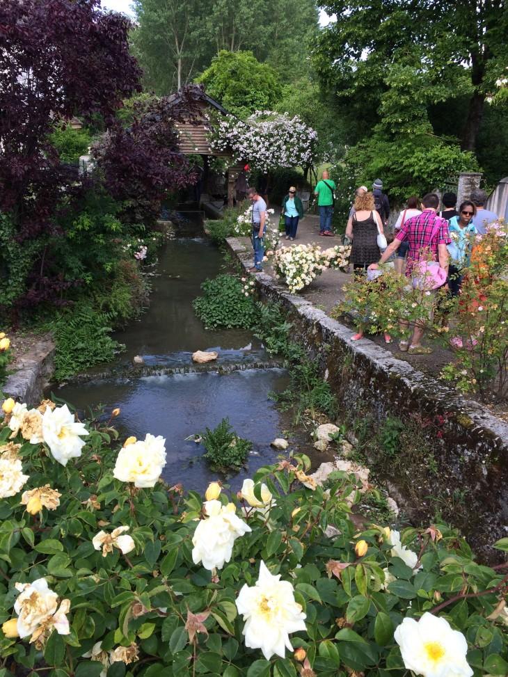 Festival de Rosas de Chédigny, França