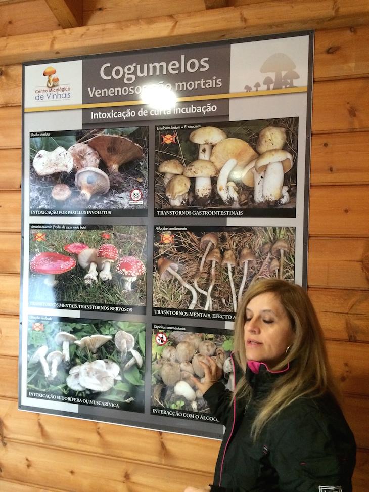 Centro Micológico do Parque Biológico de Vinhais