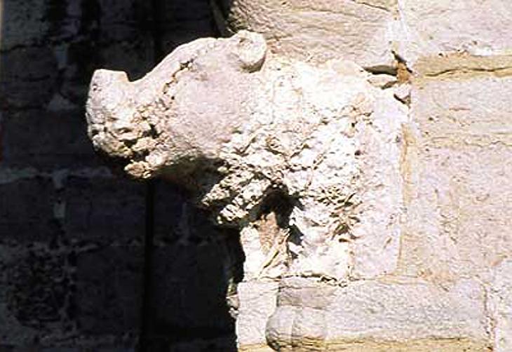 Rinoceronte ©Direitos Reservados Torre de Belém
