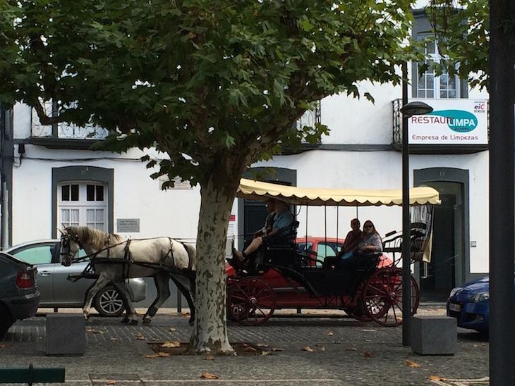 Passeio de Charrete em Ponta Delgada