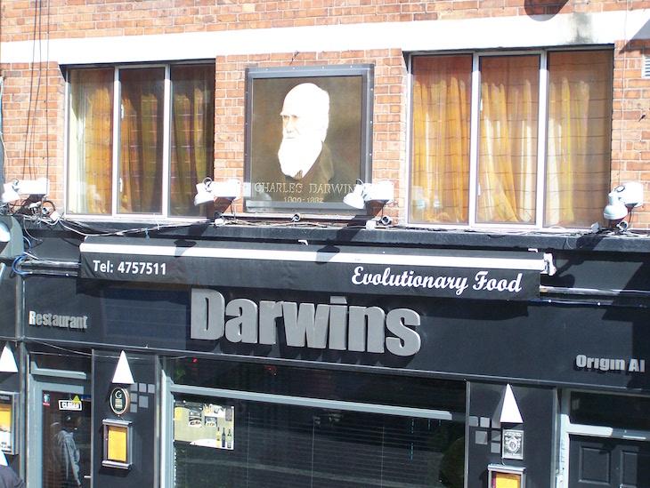 Restaurante Darwins, Dublin