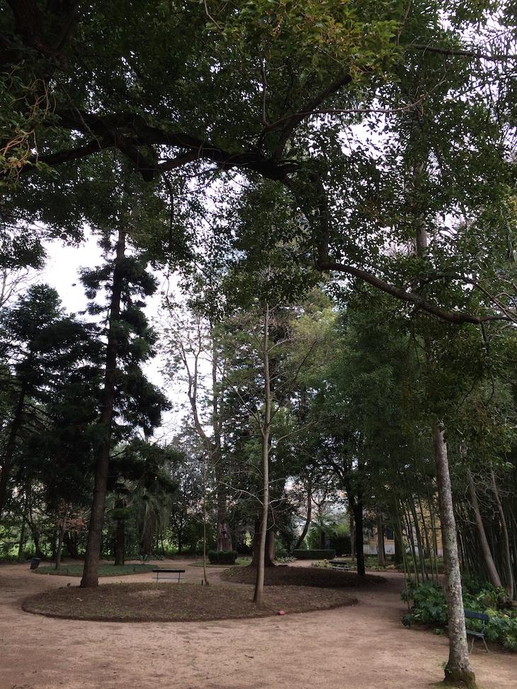 Árvores na Quinta das Lágrimas, Coimbra