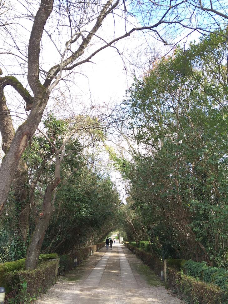 Caminho da Quinta das Lágrimas, Coimbra