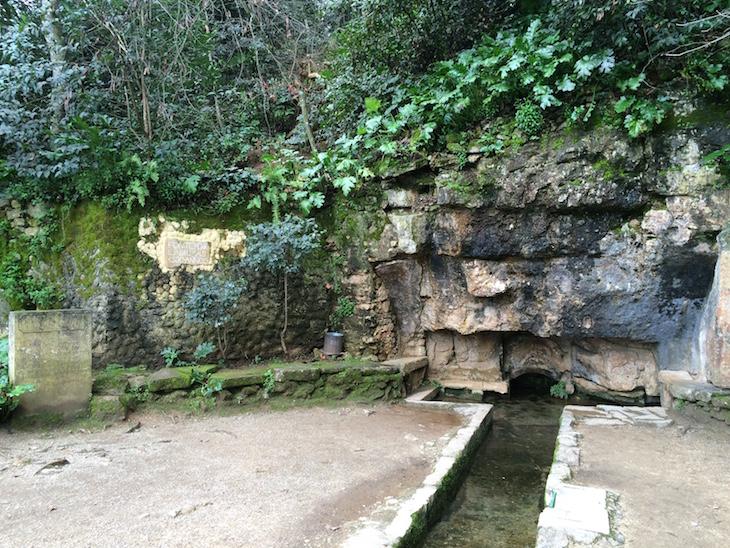 Fonte das Lágrimas, Quinta das Lágrimas, Coimbra