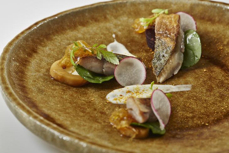 São Gabriel: Filete de sarda levemente fumada, aipo caramelizado, marmelada de cebola e molho de rábano