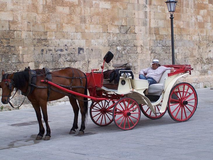 Cavalo em Palma de Maiorca