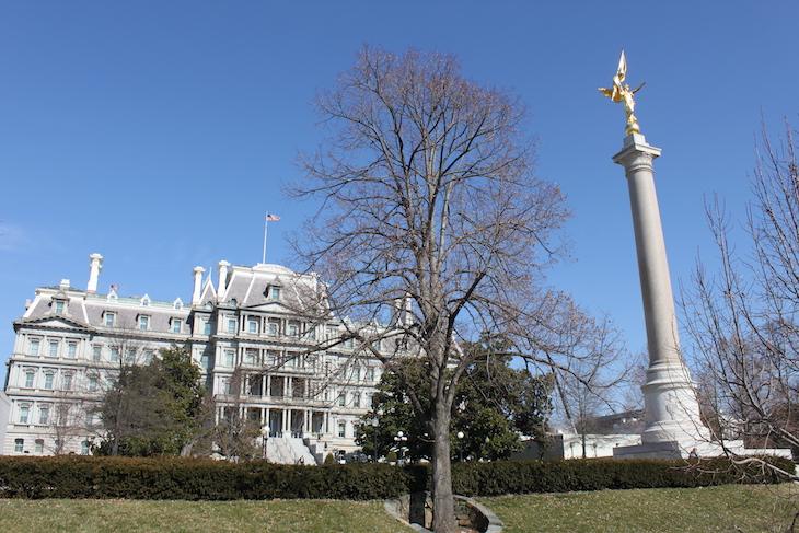 Em Washington DC © Viaje Comigo