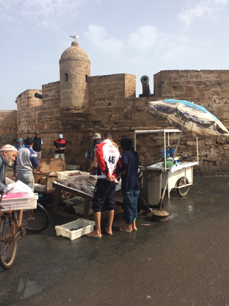 Compras no Porto de pesca de Essaouira, Marrocos © Viaje Comigo