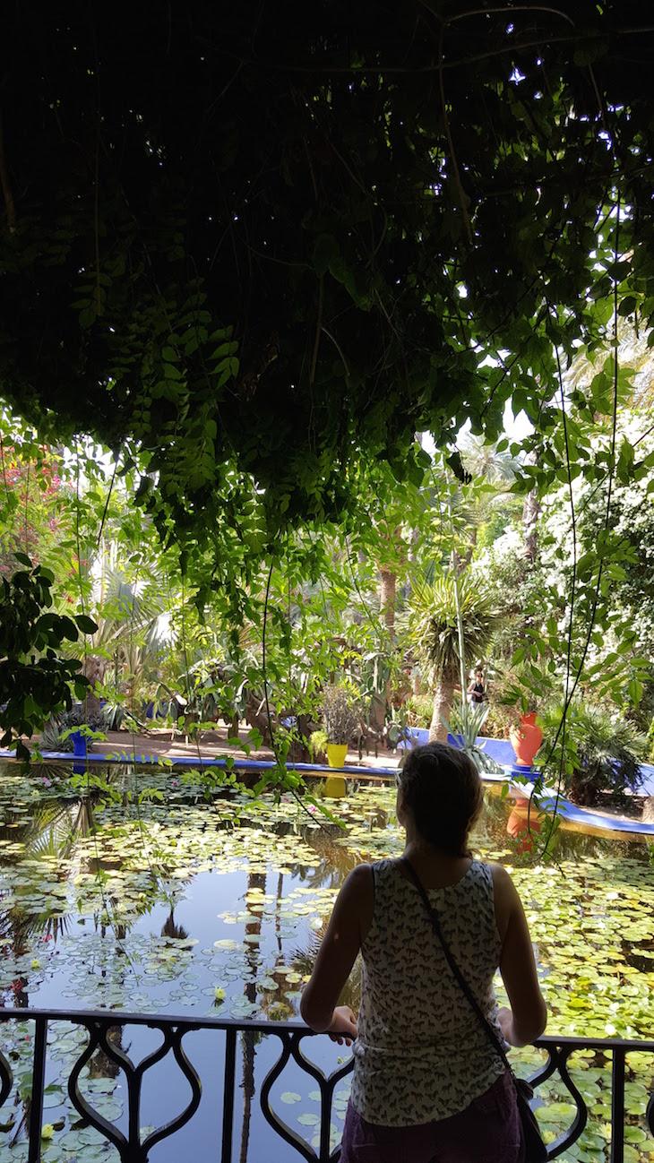 Jardim Majorelle - Marraquexe - Marrocos © Viaje Comigo-