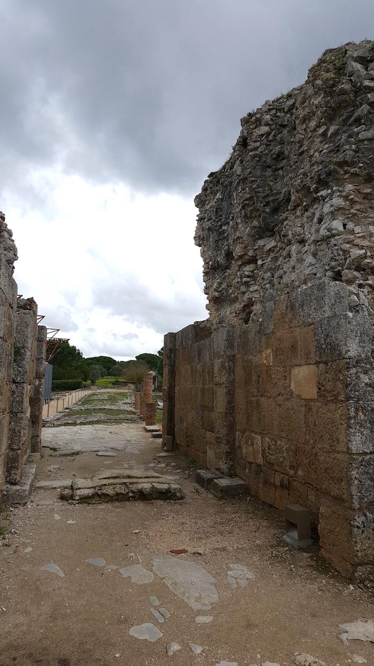 Estrada de Conímbriga e muralha © Viaje Comigo