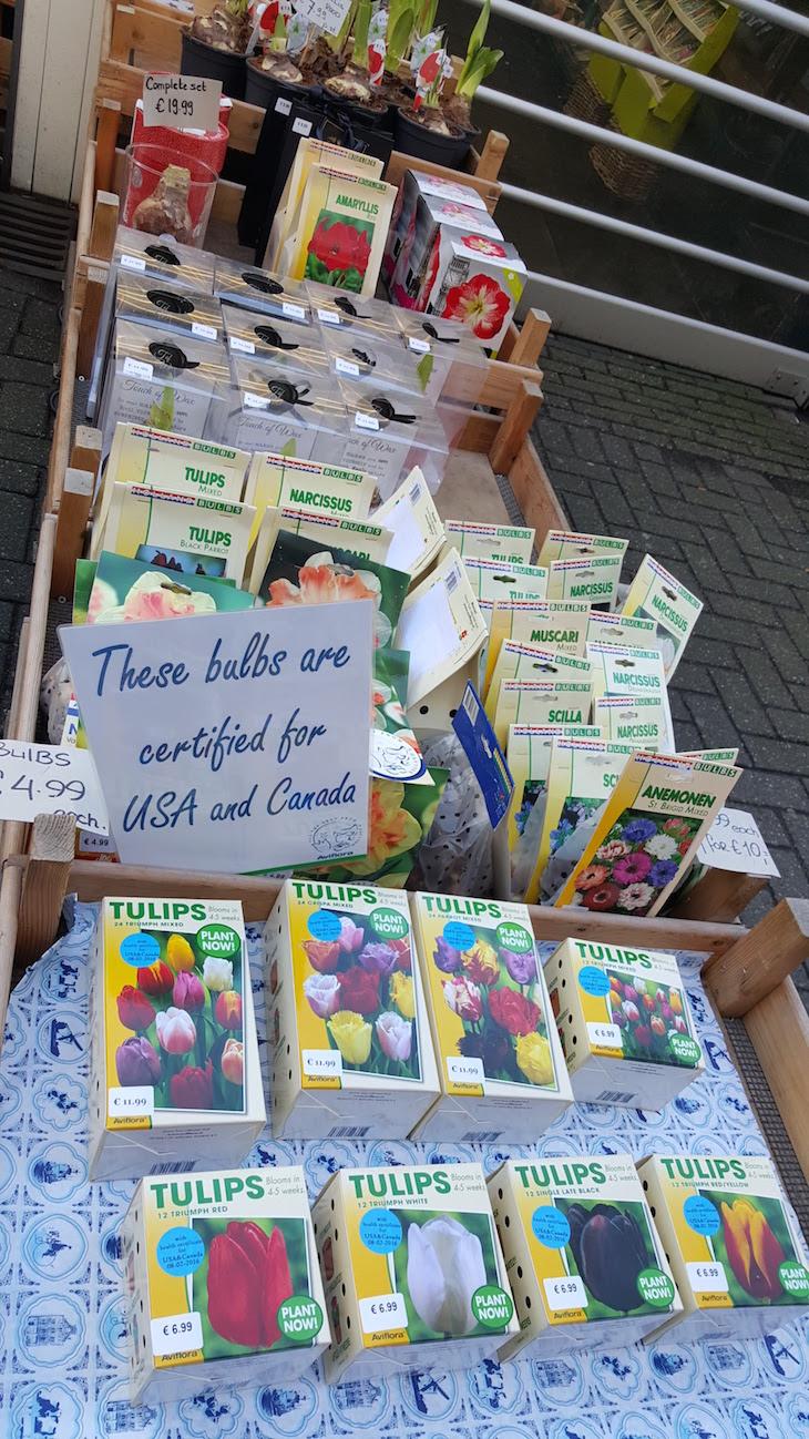 Bloemenmarkt - Mercado de Flores em Amesterdão © Viaje Comigo5