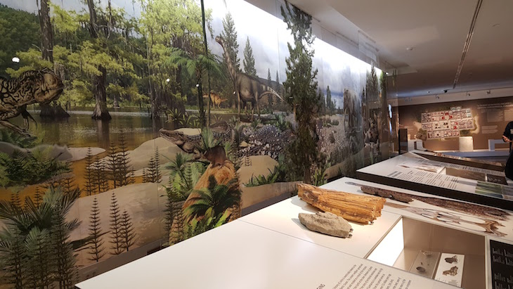 Exposição do Museu de Leiria © Viaje Comigo