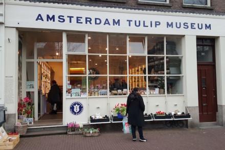 Museu das Tulipas em Amesterdão © Viaje Comigo